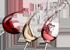 Cave Le Teich Vin Logo
